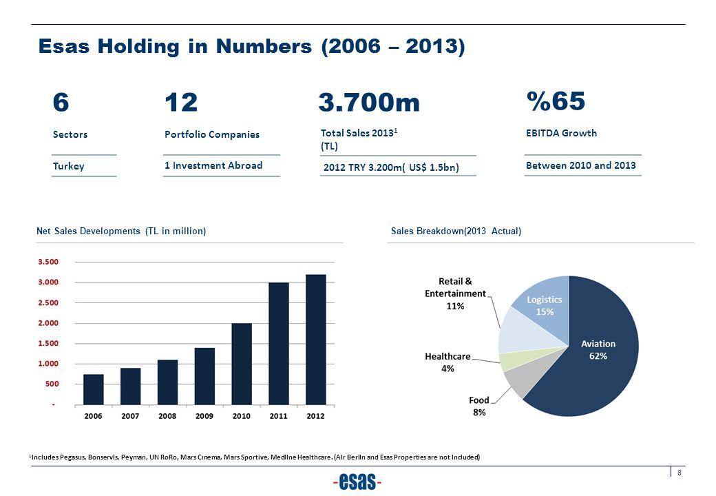 Esas Holding in Numbers (2006 – 2013)