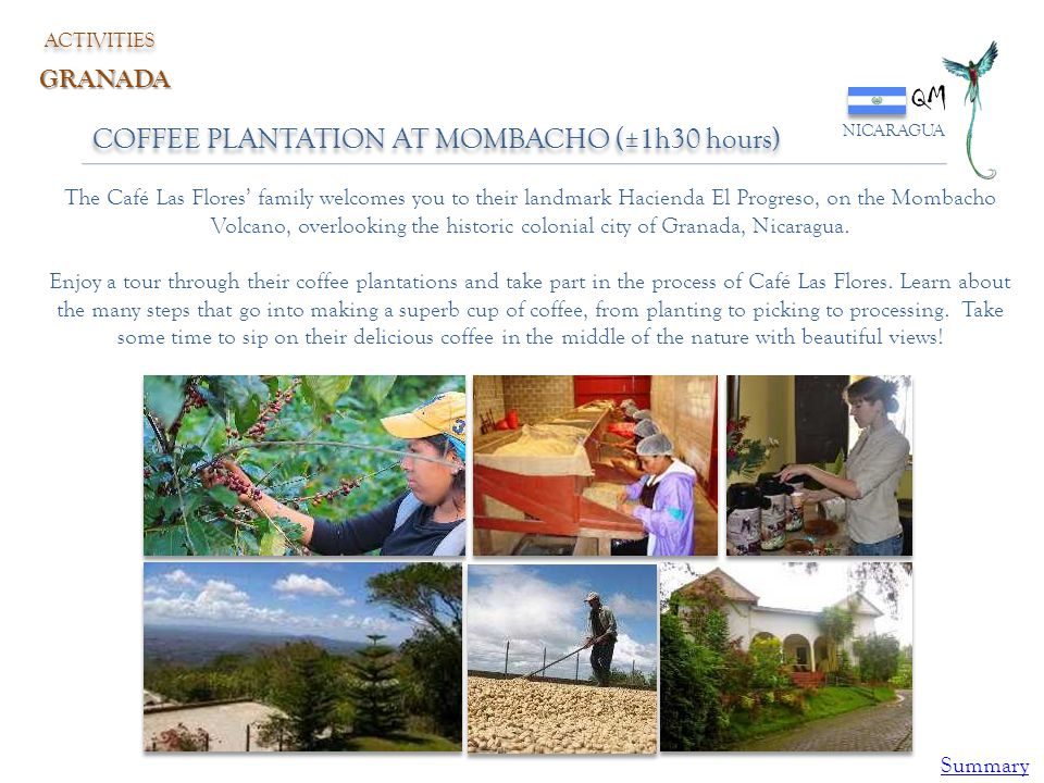 QM COFFEE PLANTATION AT MOMBACHO (±1h30 hours) GRANADA