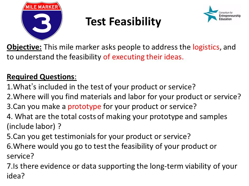 Test Feasibility Objective: This mile marker asks people to address the logistics, and to understand the feasibility of executing their ideas.