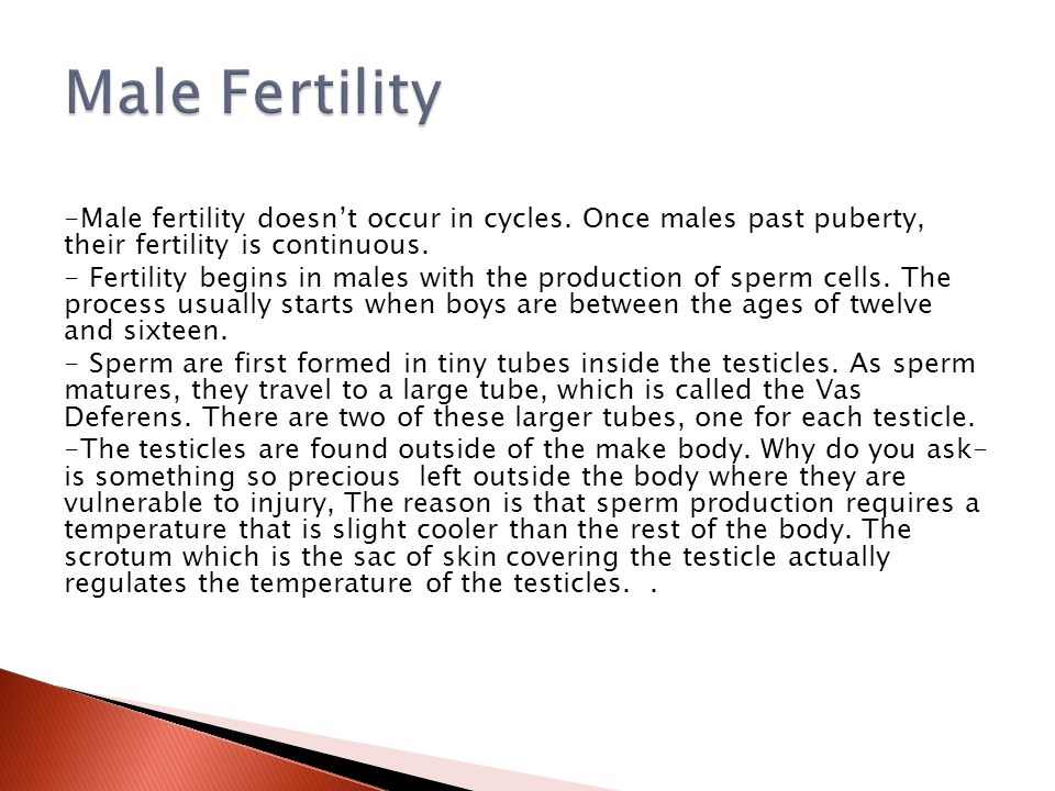 Male Fertility -Male fertility doesn't occur in cycles. Once males past puberty, their fertility is continuous.