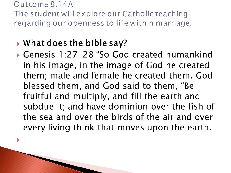 Outcome 8.14A The student will explore our Catholic teaching regarding our openness to life within marriage.