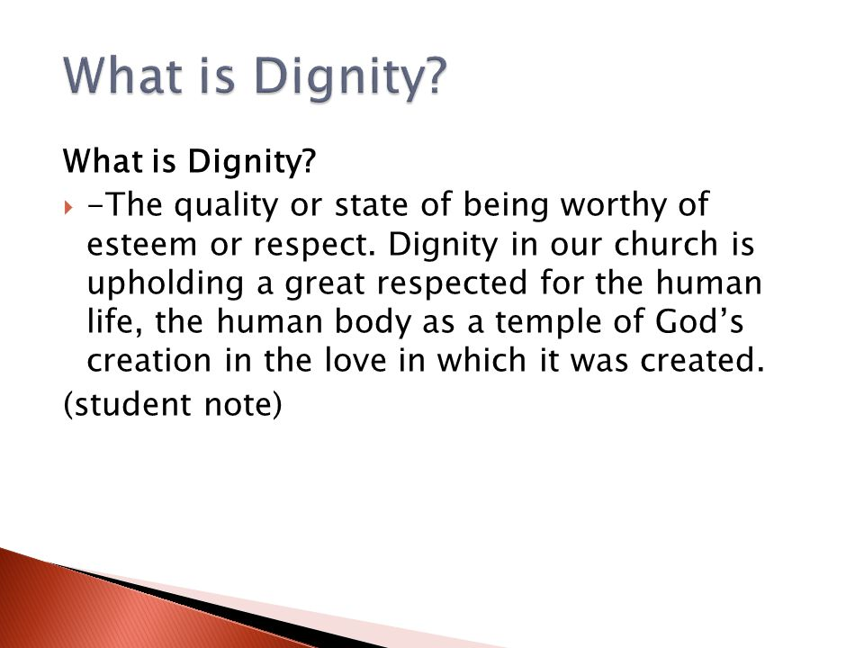 What is Dignity What is Dignity