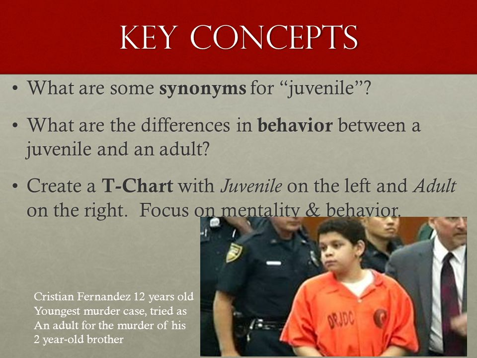 Key Concepts What are some synonyms for juvenile