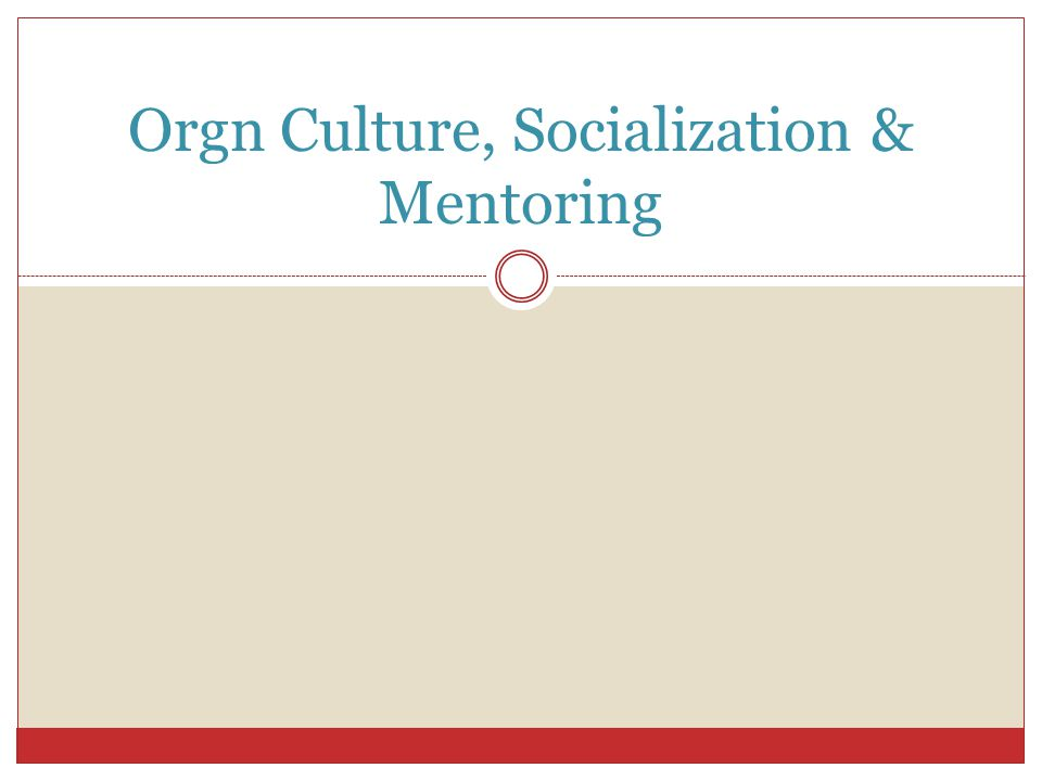 Orgn Culture, Socialization & Mentoring