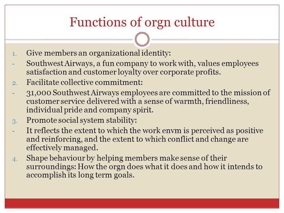 Functions of orgn culture