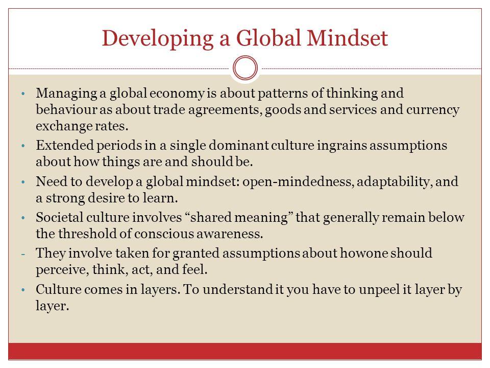 Developing a Global Mindset