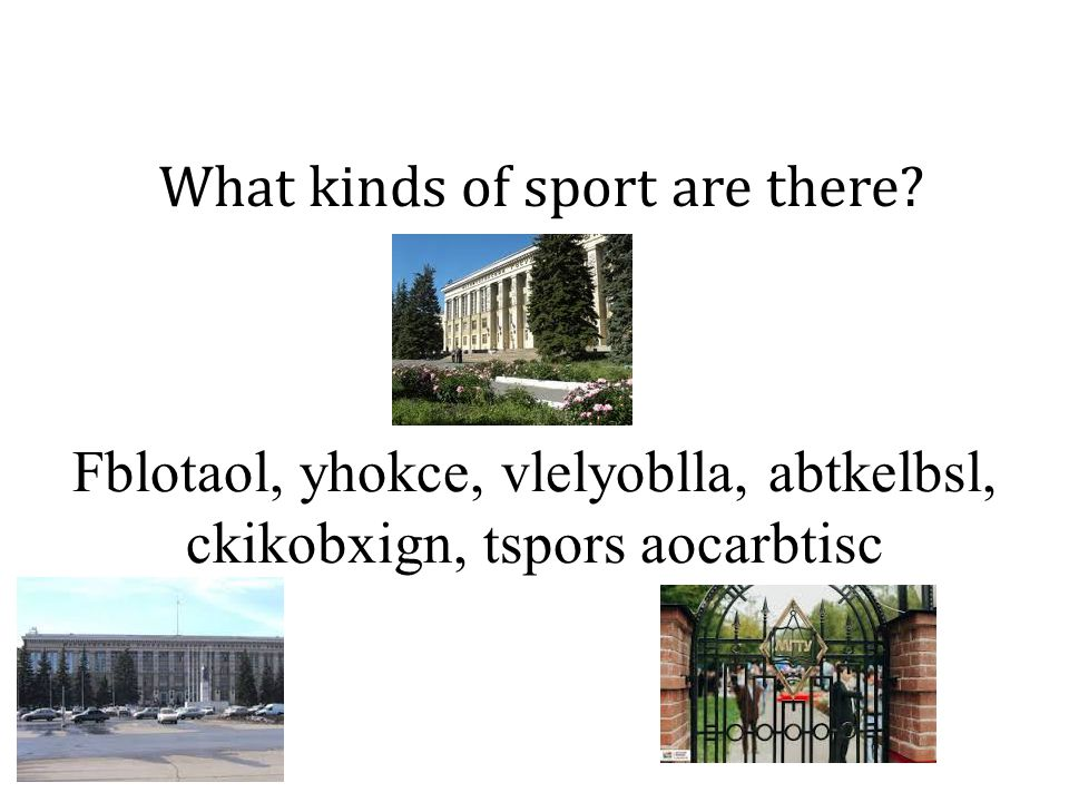 What kinds of sport are there