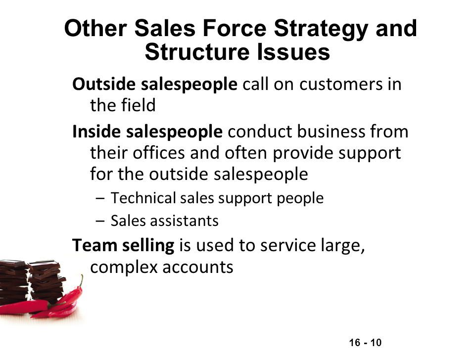 Other Sales Force Strategy and Structure Issues