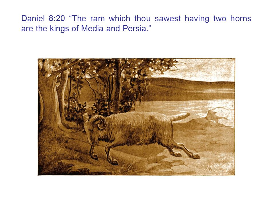 Daniel 8:20 The ram which thou sawest having two horns are the kings of Media and Persia.