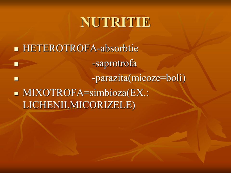 NUTRITIE HETEROTROFA-absorbtie -saprotrofa -parazita(micoze=boli)