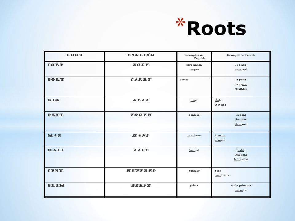 Roots root english Corp body PORT CARRY Reg rule Dent Tooth Man hand