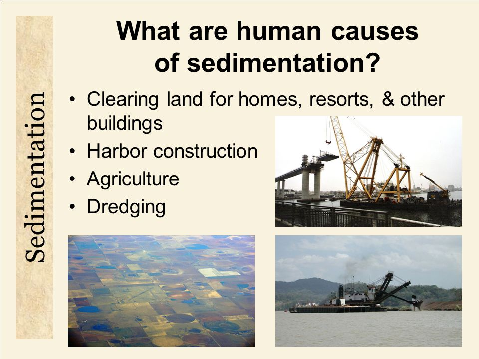What are human causes of sedimentation