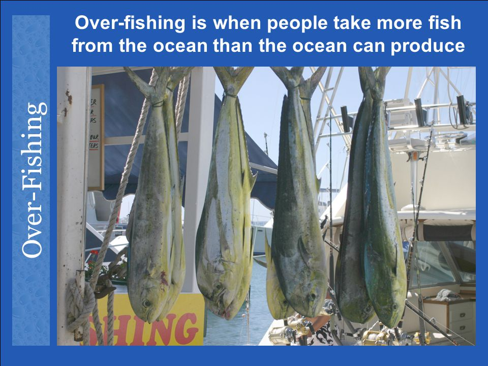 Over-fishing is when people take more fish from the ocean than the ocean can produce
