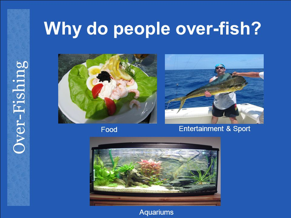 Why do people over-fish