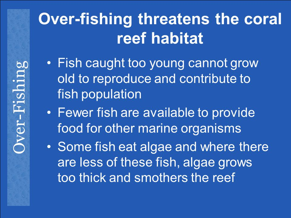 Over-fishing threatens the coral reef habitat