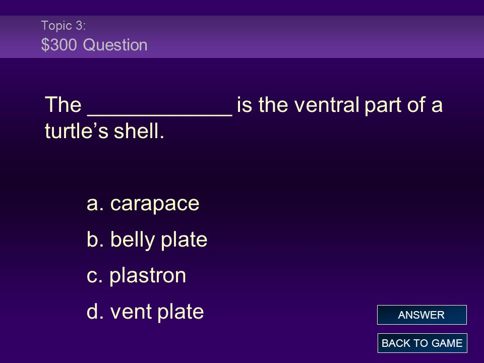 The ____________ is the ventral part of a turtle's shell.