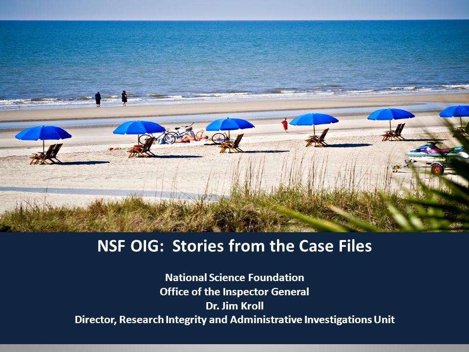 NSF OIG: Stories from the Case Files
