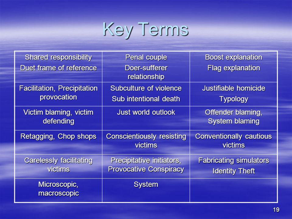 Key Terms Shared responsibility Duet frame of reference Penal couple