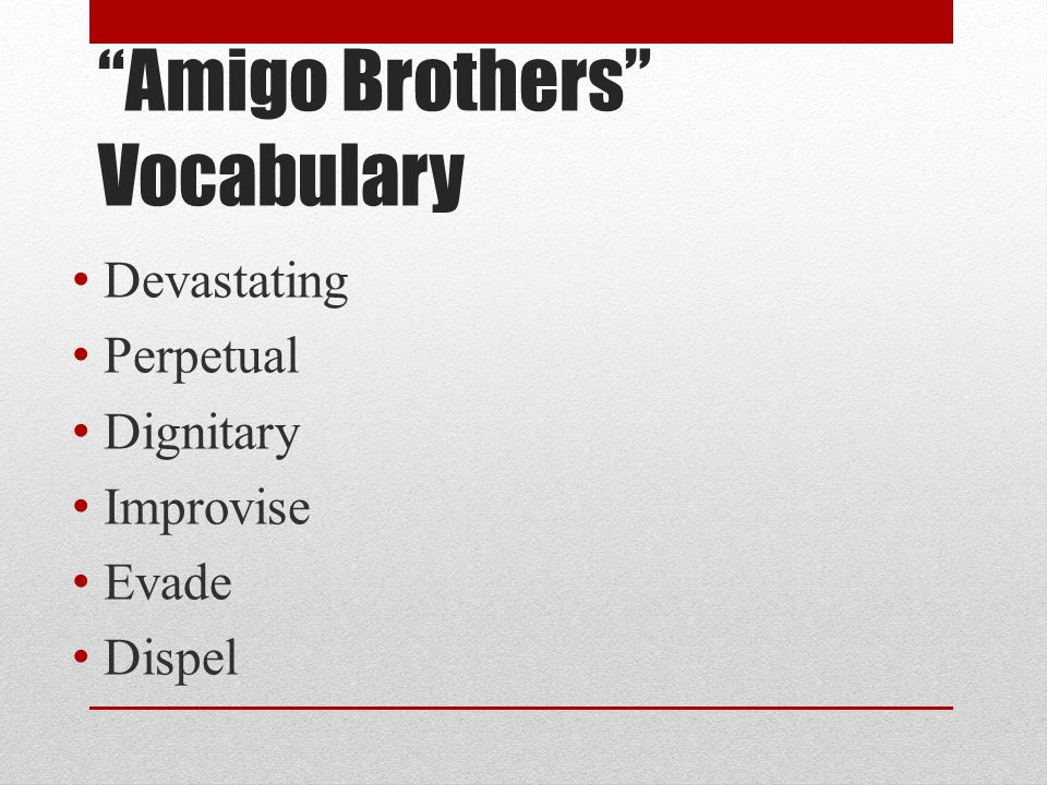 Amigo Brothers Vocabulary
