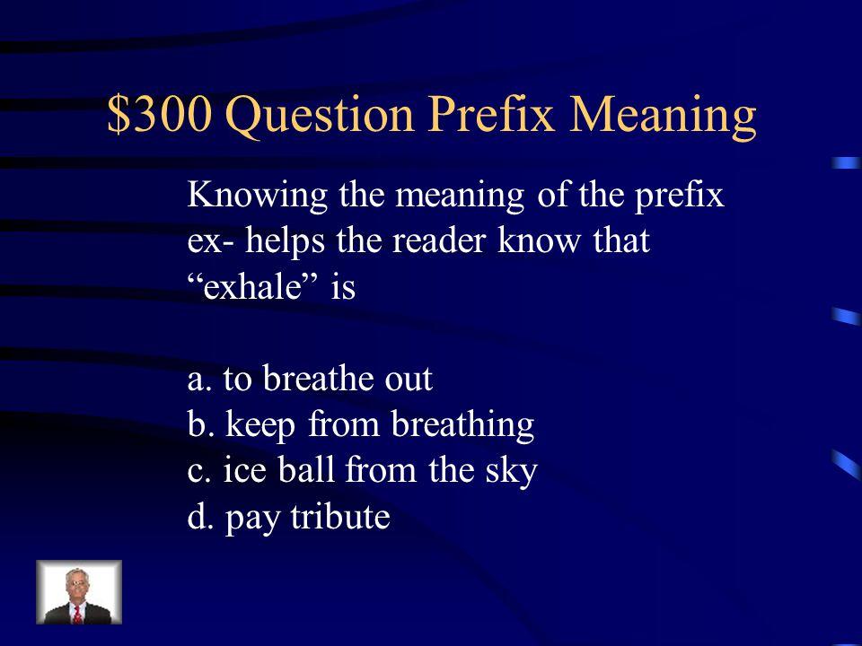 $300 Question Prefix Meaning
