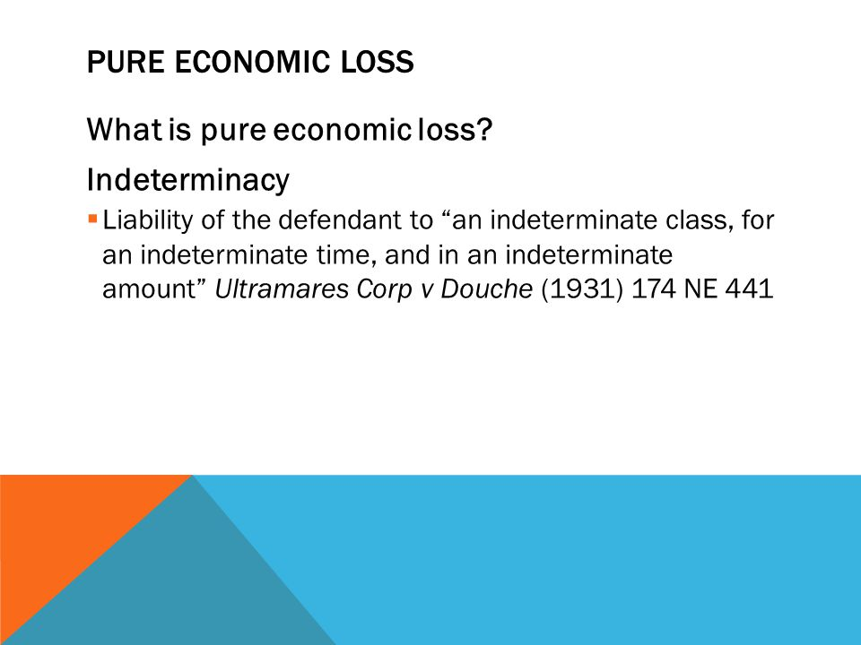 What is pure economic loss Indeterminacy
