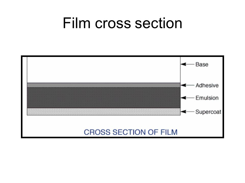 Film cross section