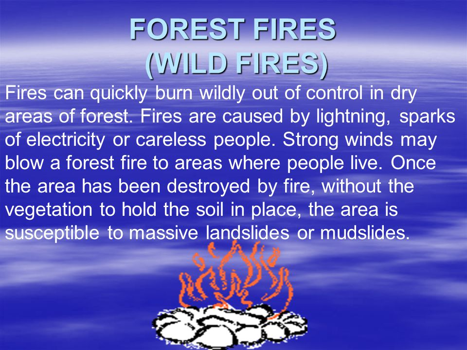 FOREST FIRES (WILD FIRES)
