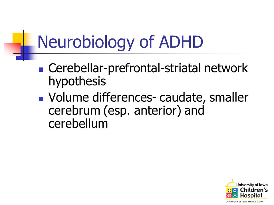 Neurobiology of ADHD Cerebellar-prefrontal-striatal network hypothesis