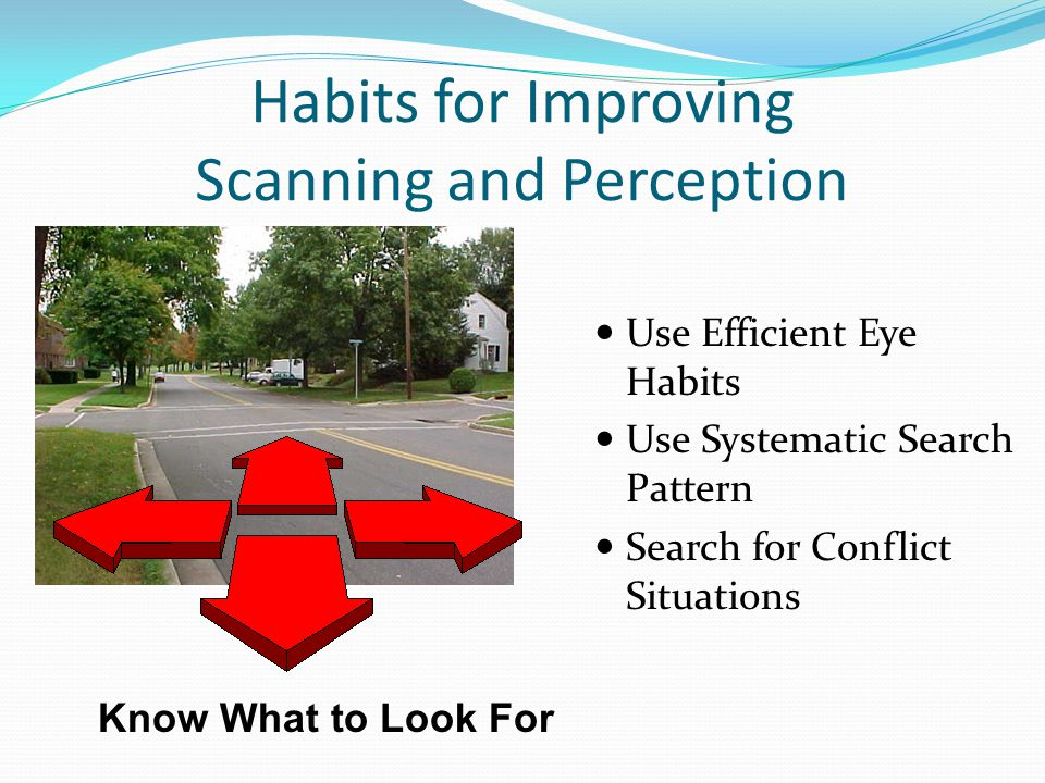 Habits for Improving Scanning and Perception