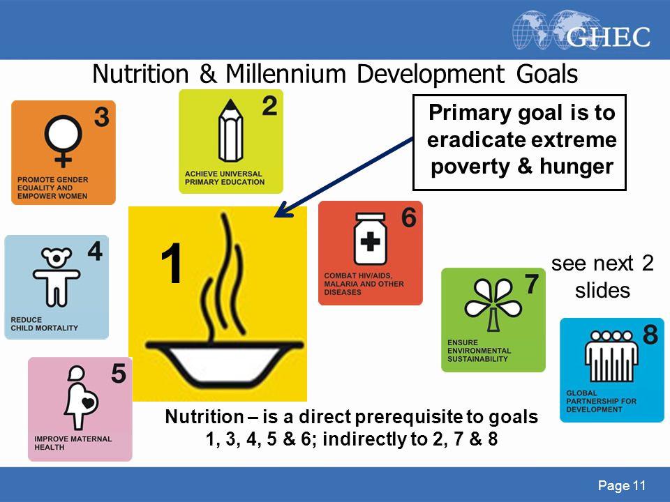 millenium development goal 6