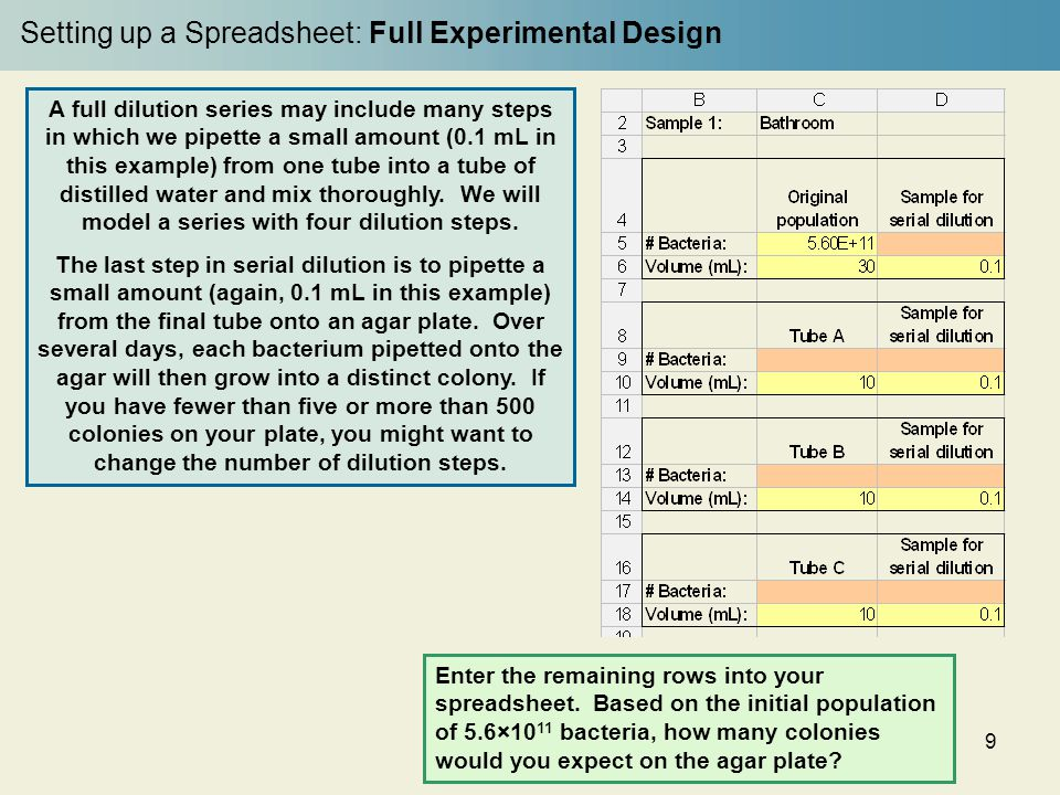 Setting up a Spreadsheet: Full Experimental Design