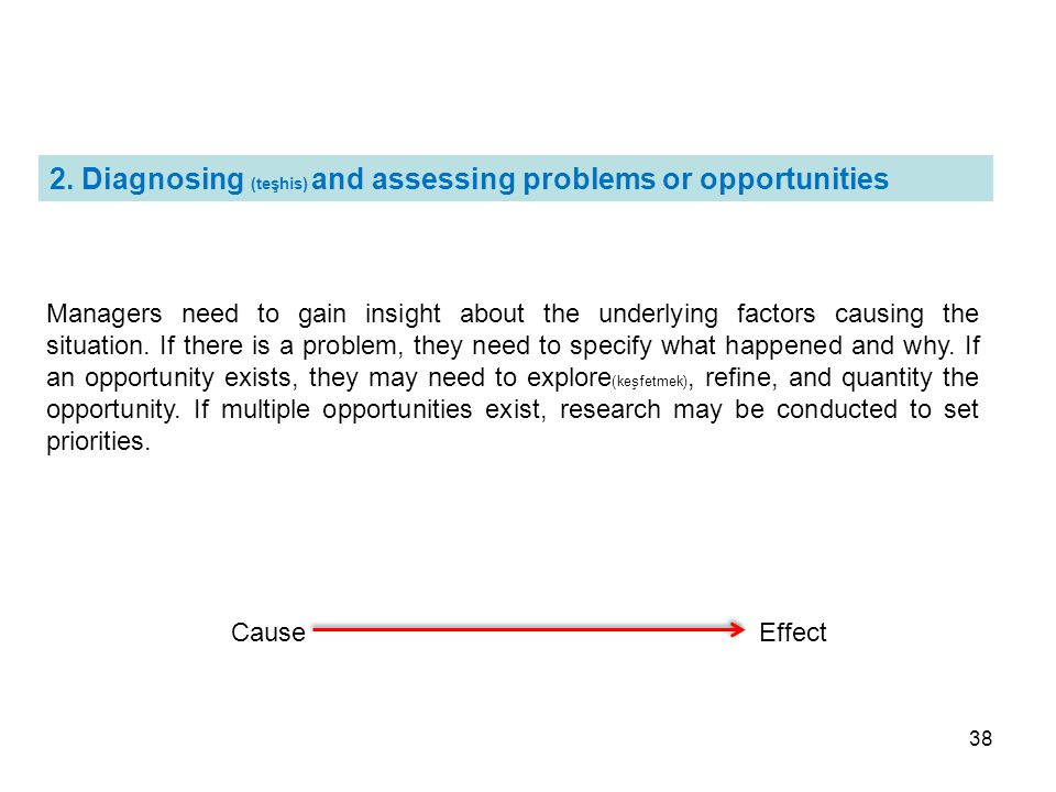 2. Diagnosing (teşhis) and assessing problems or opportunities