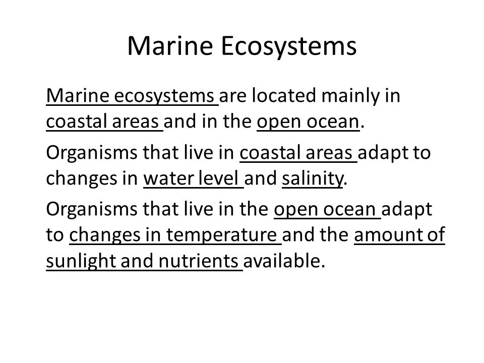 Marine Ecosystems Marine ecosystems are located mainly in coastal areas and in the open ocean.