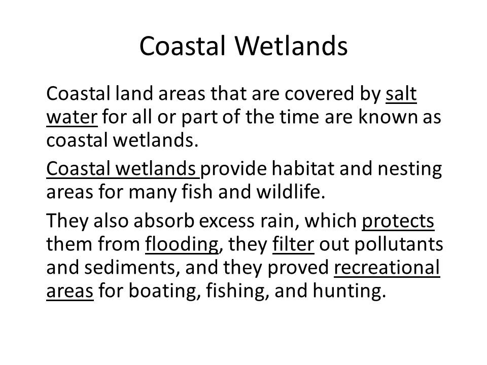 Coastal Wetlands Coastal land areas that are covered by salt water for all or part of the time are known as coastal wetlands.