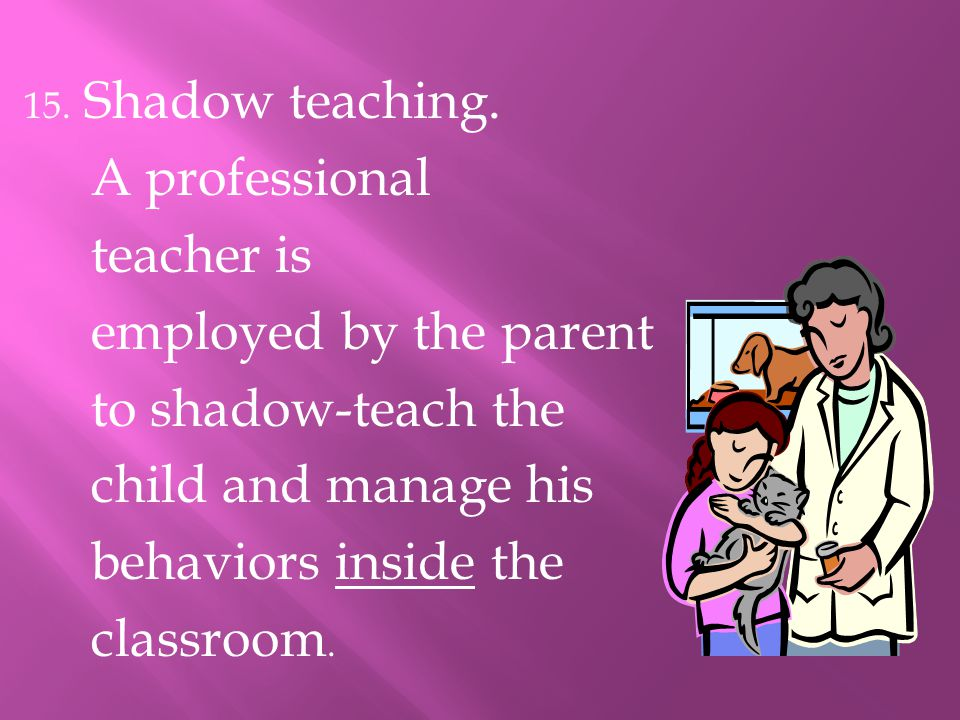 A professional teacher is employed by the parent to shadow-teach the