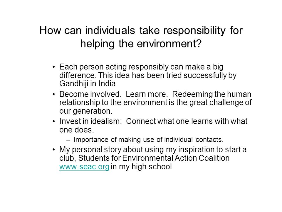 How can individuals take responsibility for helping the environment