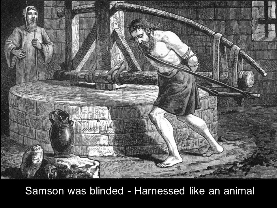 Samson was blinded - Harnessed like an animal