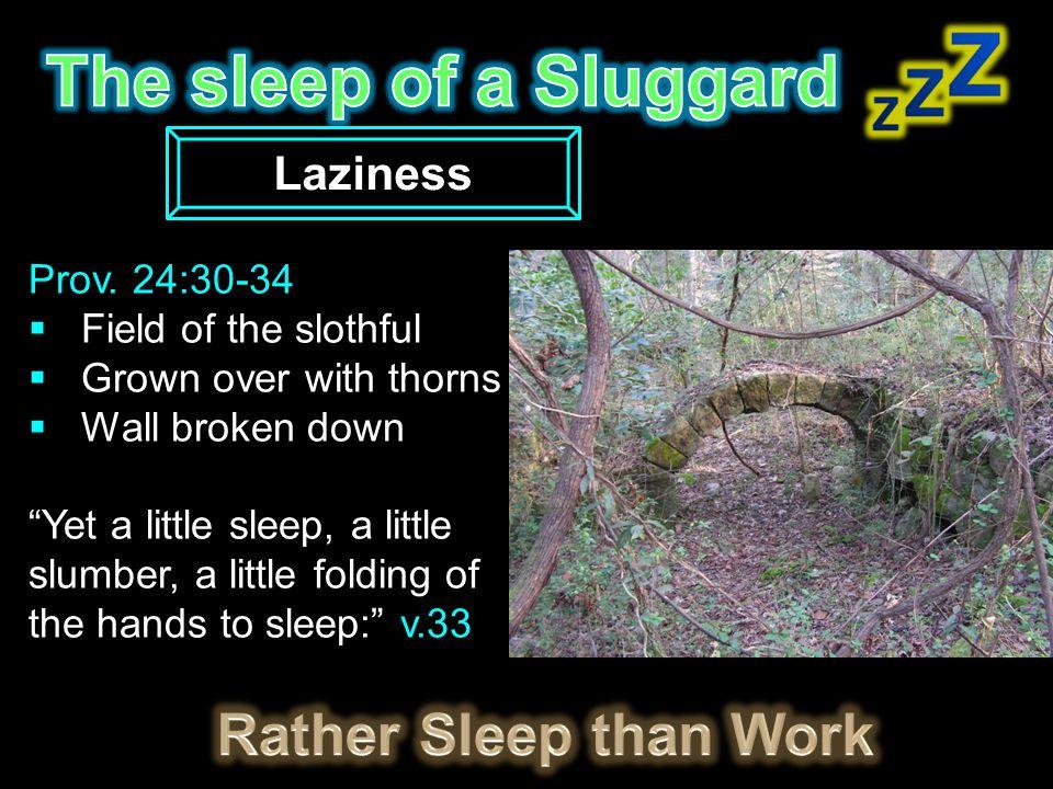The sleep of a Sluggard Rather Sleep than Work Laziness Prov. 24:30-34