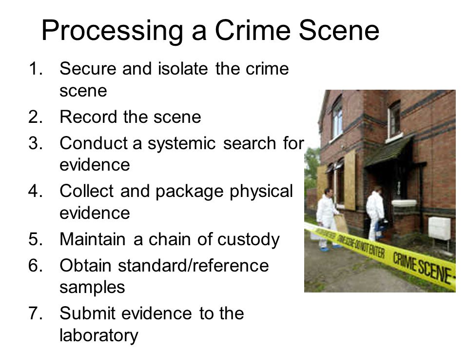 Processing a Crime Scene