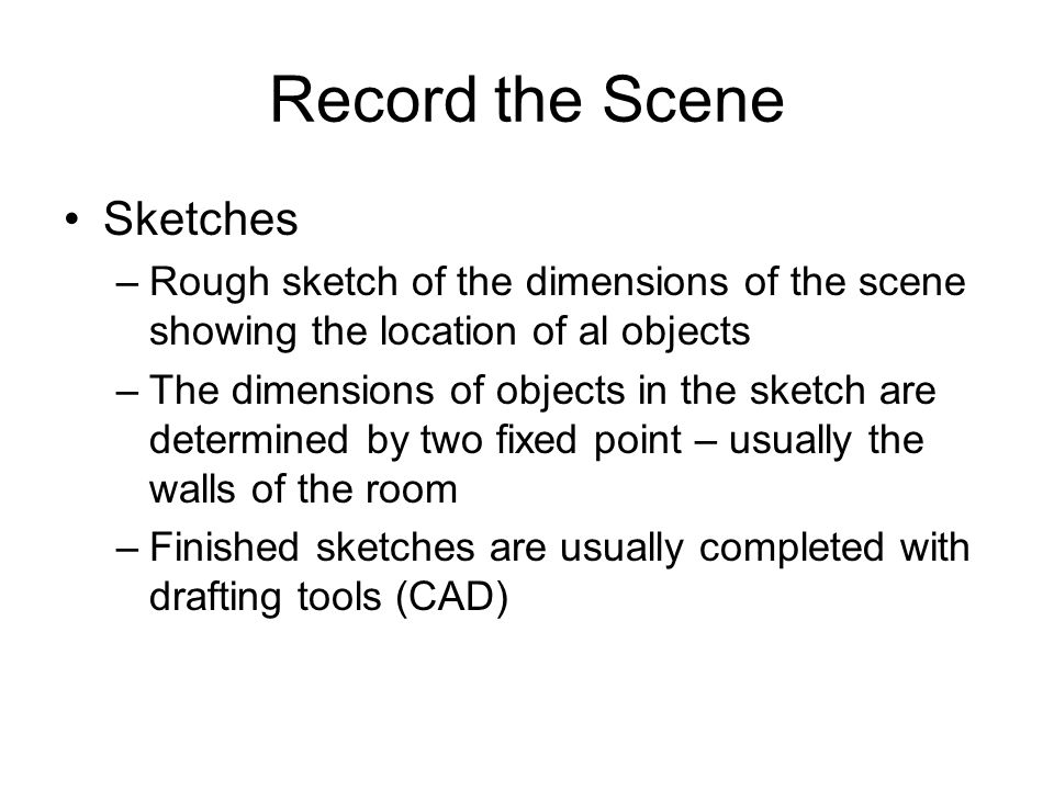 Record the Scene Sketches