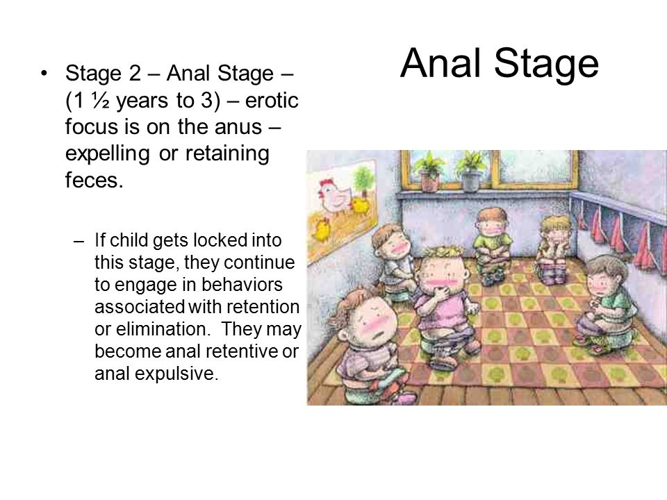 Anal Stage Stage 2 – Anal Stage – (1 ½ years to 3) – erotic focus is on the anus – expelling or retaining feces.