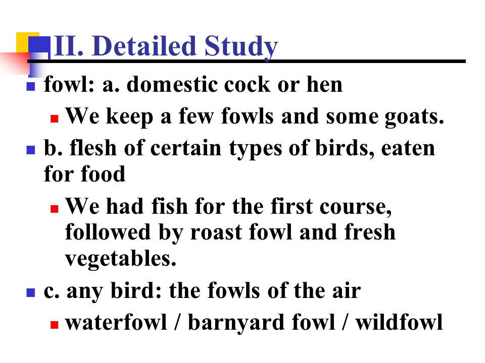 II. Detailed Study fowl: a. domestic cock or hen