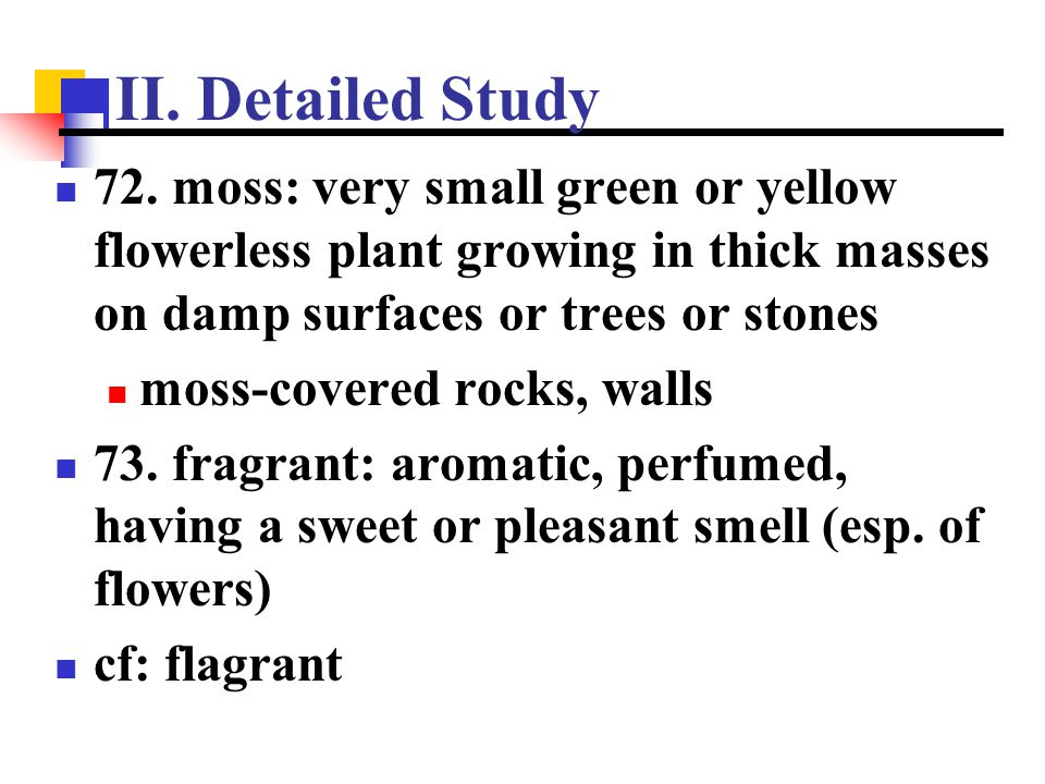 II. Detailed Study 72. moss: very small green or yellow flowerless plant growing in thick masses on damp surfaces or trees or stones.