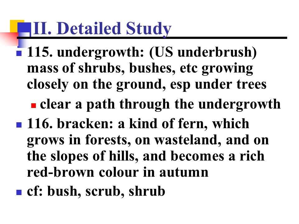 II. Detailed Study 115. undergrowth: (US underbrush) mass of shrubs, bushes, etc growing closely on the ground, esp under trees.