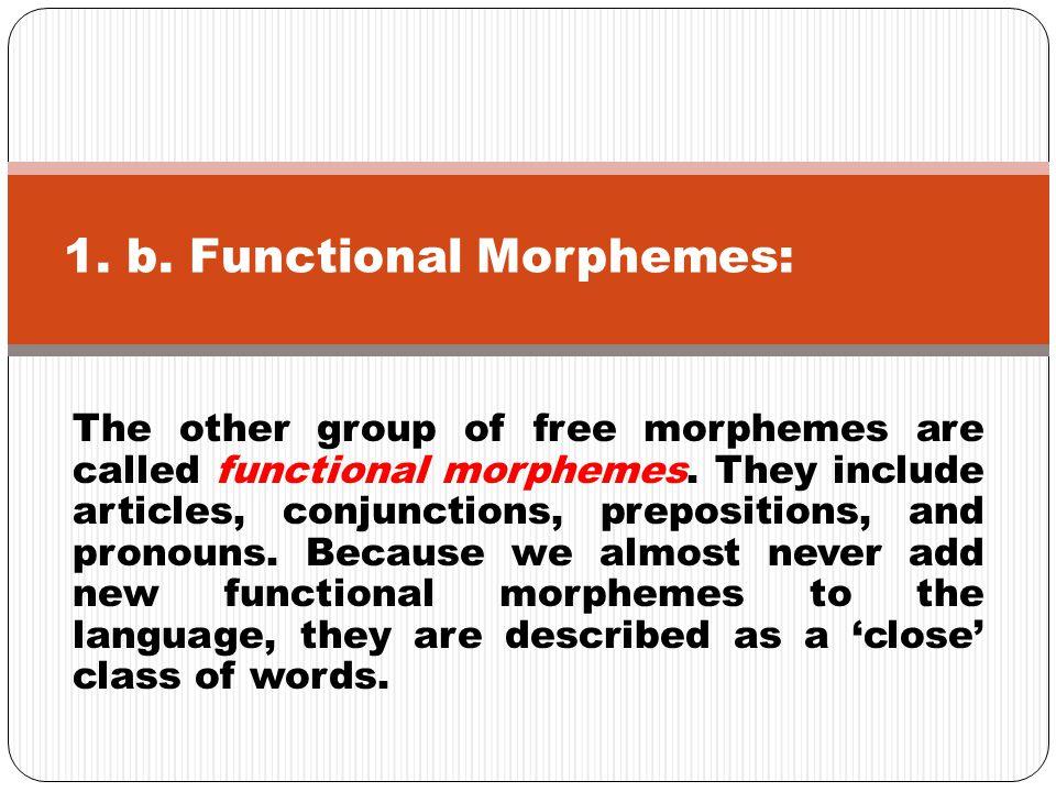 1. b. Functional Morphemes: