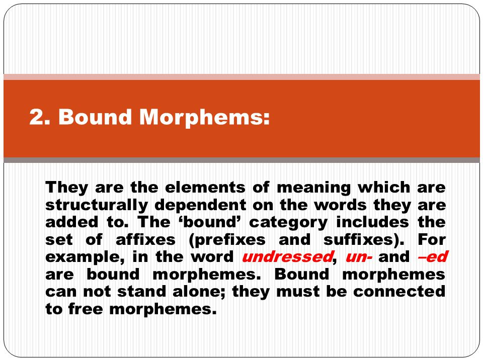 2. Bound Morphems: