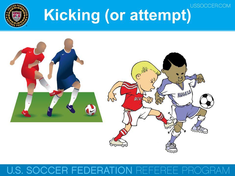 Kicking (or attempt) Online Training Script: