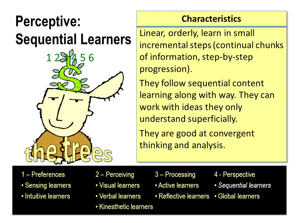 Perceptive: Sequential Learners