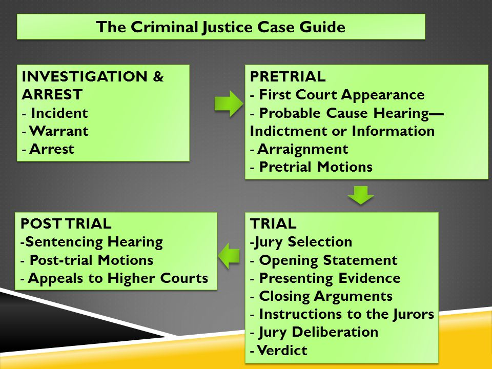 The Criminal Justice Case Guide