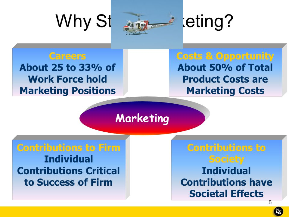 Why Study Marketing Marketing Careers